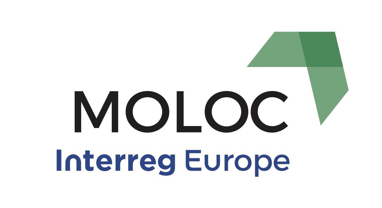 MOLOC – Low carbon urban morphology