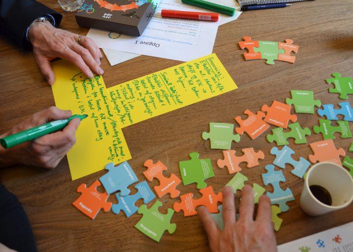 Sustainability Puzzle