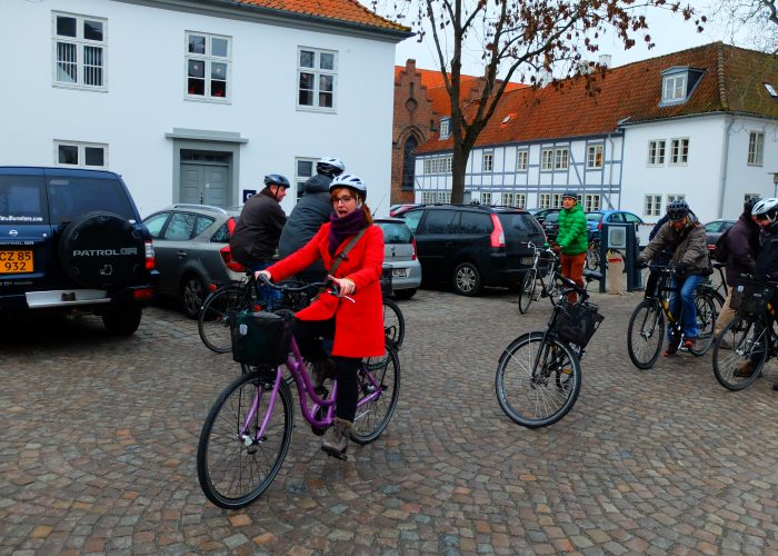 Odense and the Green Business Growth partnership