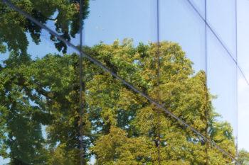 "Frankfurt, a german pionner with a ""100% renewable"" roadmap"