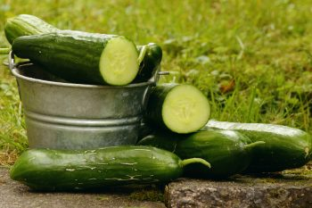 Will there be cucumbers at Christmas?